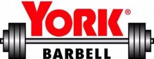 York logo experiment-thumb-325x126-1193
