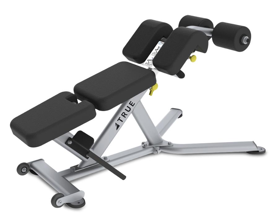 True Fitness FS-22 Low Back/Abdominal Bench
