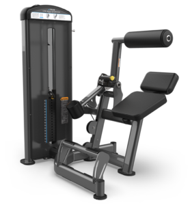 True Fitness Fuse-1300 Low Back Extension